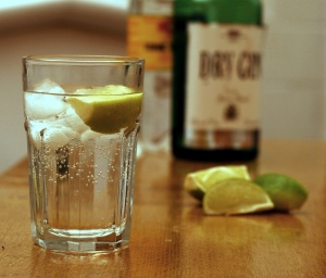 Gin_and_Tonic_with_ingredients